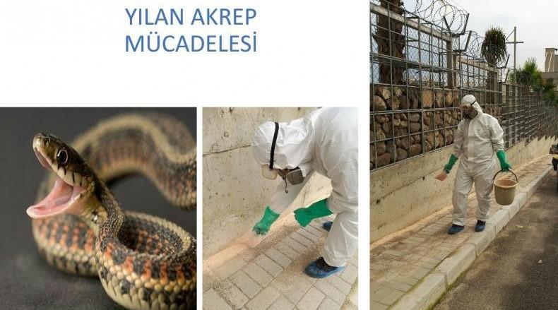 yılan zehiri ilaçları